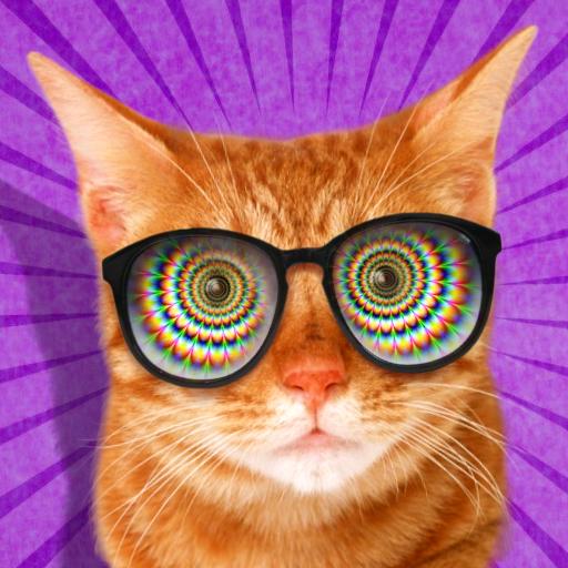 模拟の猫の催眠です。 シミュレータ LOGO-記事Game
