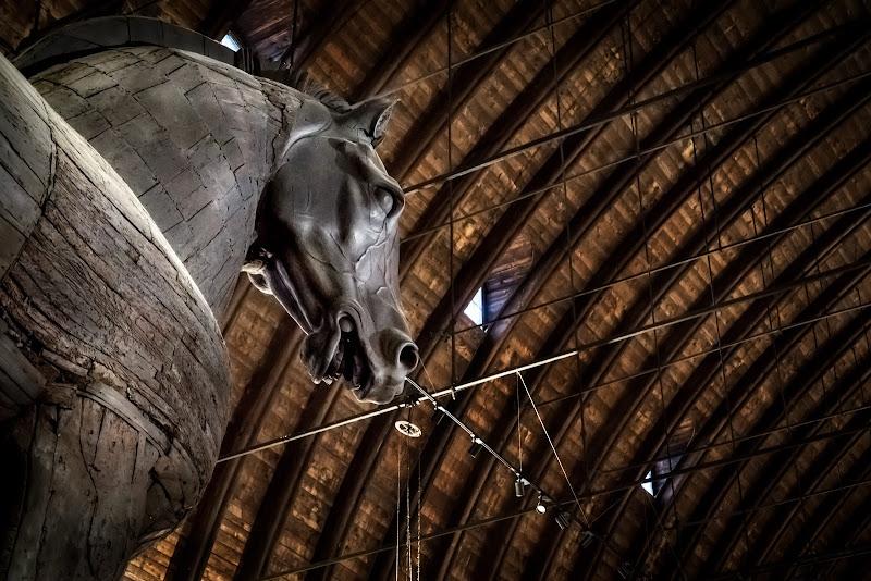 Cavallo ligneo Palazzo della Ragione -Padova- di aliscaforotto