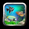 خلفيات حوض سمك و الأسماك المتحركة الروبوت خلفيات حوض سمك و