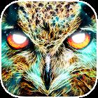 Spirit Animal Oracle Cards icon