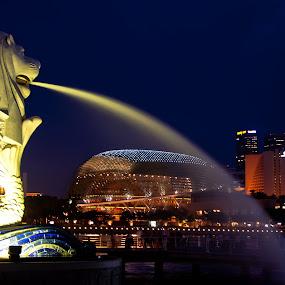 Merlion by Mon Rojumnong - Buildings & Architecture Statues & Monuments
