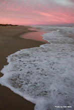 Photo: (Year 3) Day 121 - Pools of Pink Sun on the Sand and Pools of Frothy White Water