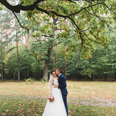 Wedding photographer Denis Konstantinov (380960170930). Photo of 19.01.2018