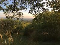 De wilde tuin van Podere Santa Pia, in een van de mooiste valleien van zuidelijk Toscane