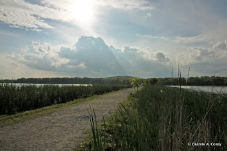 Photo: First warm stroll on the Dike Trail, late afternoon