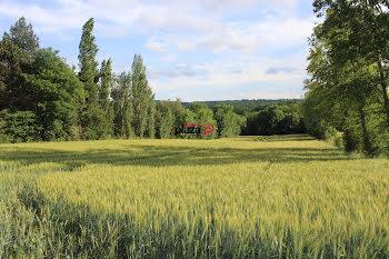terrain à Escueillens-et-Saint-Just-de-Bélengard (11)