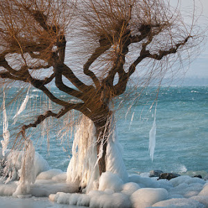 Invierno 2012-2074.jpg