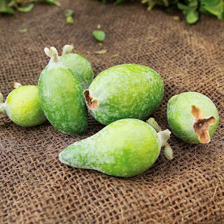 Guava Butter Recipes.