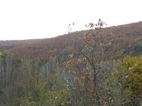 Photo: Angel se tiró a ese monte, y ni nos enteramos