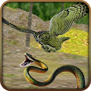 Angry Eagle Owl Bird Hunt for PC and MAC