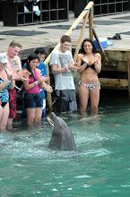 Photo: Putouksilta jatkoimme rannan delfiinialtaalle