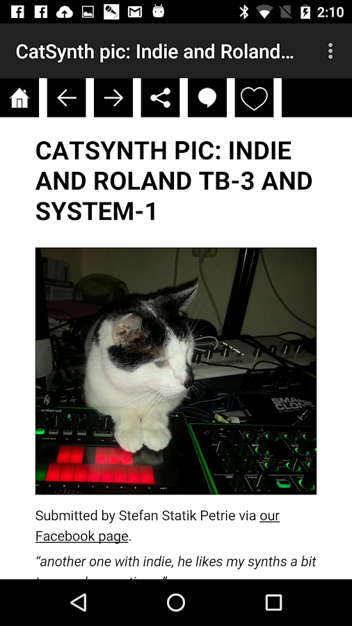 CatSynth: The App!- screenshot