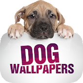 Wallpapers with dogs
