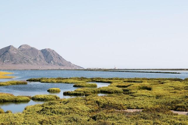Las Salinas de Cabo de Gata.