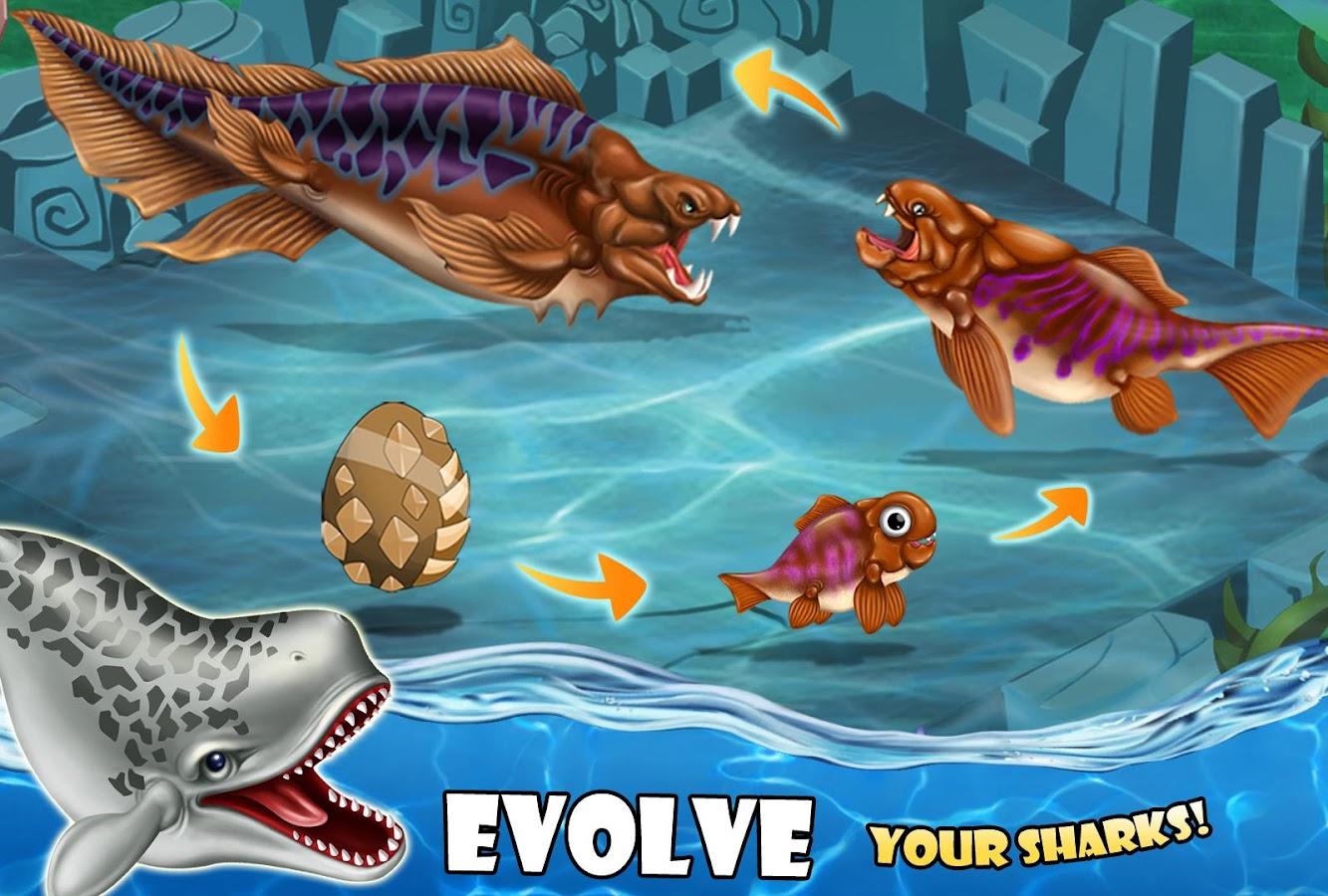 shark world android apps on google play shark world screenshot