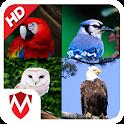 60 Bird Sounds & Ringtones icon