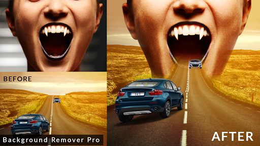 Background Remover Pro : Background Eraser changer 1.8 screenshots 12