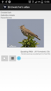 Birds of Europe FREE- screenshot thumbnail