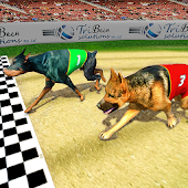 Real Dog Racing Tournament