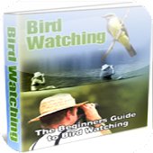 Guide to Bird Watching