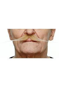 Spetsig mustasch, blond