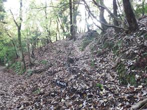 林道に下山