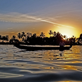 Sunset on the Backwater by Prakash Balge - Landscapes Sunsets & Sunrises ( water, backwater, coconut, waterscape, sunset, boat,  )