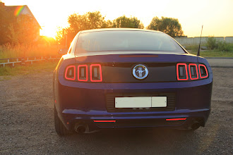 Photo: Ford Mustang 2013 (3.7л, 305 л/с мкпп).