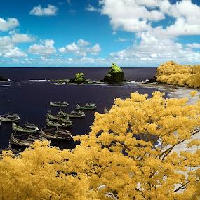 Papuma by Bob Shahrul - Landscapes Travel ( nikkor, nikon, papuma )