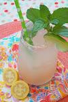 Long Beach Guava & Mint Soda