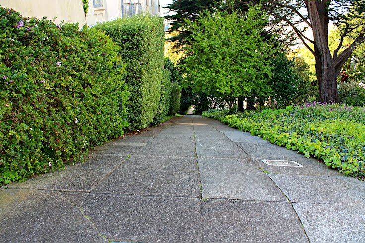Next to one of the crookedest streets is one of the steepest sidewalks (38% grade)!