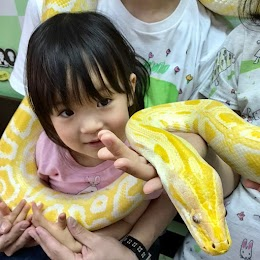 体感型動物園iZoo(イズー)