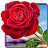 Rose. Magic Touch Flowers logo