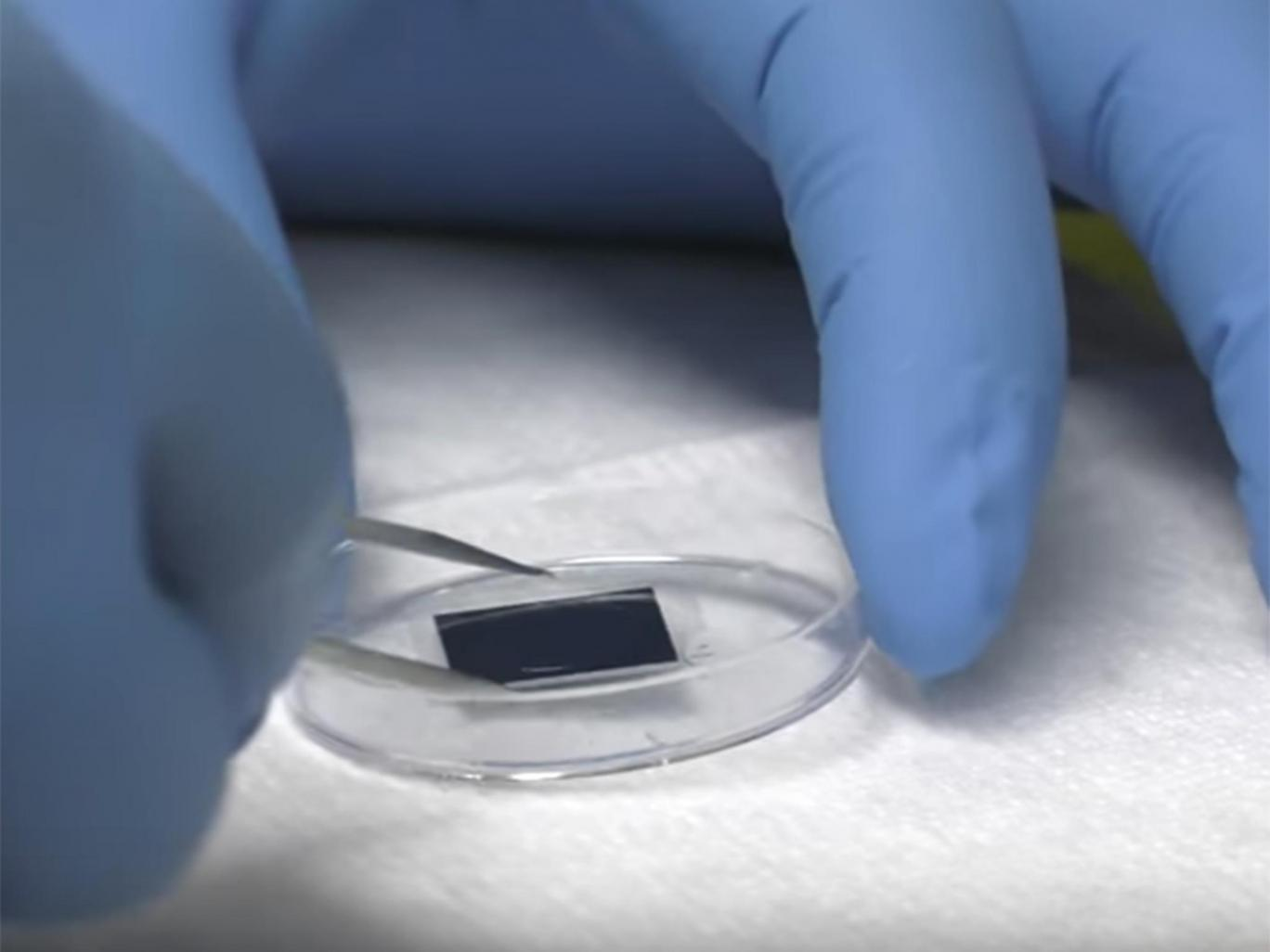 'Breakthrough' microchip technology helps heal wounds, nerves and organ damage