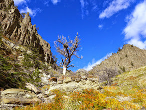 Photo: Scenery - looking back at the the canyon where we descended.