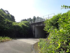 県道のトンネルを抜ける