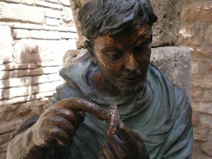 San Francesco e la cicala di oceanina
