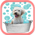 Dog Grooming Tips And Tricks icon