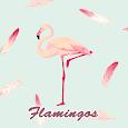 Cute Wallpaper Flamingos Theme