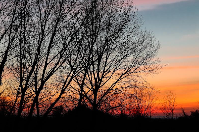 Un banale tramonto di E l i s a E n n E