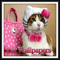 Cat Wallpapers Cuties icon