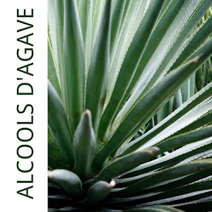 Alcools agave