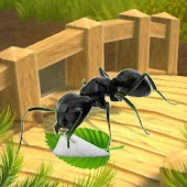 Ant Survival Simulator - Kids Free Game 2018