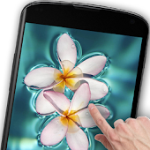 Floating Flower Live Wallpaper