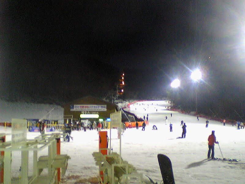 하이원 스키