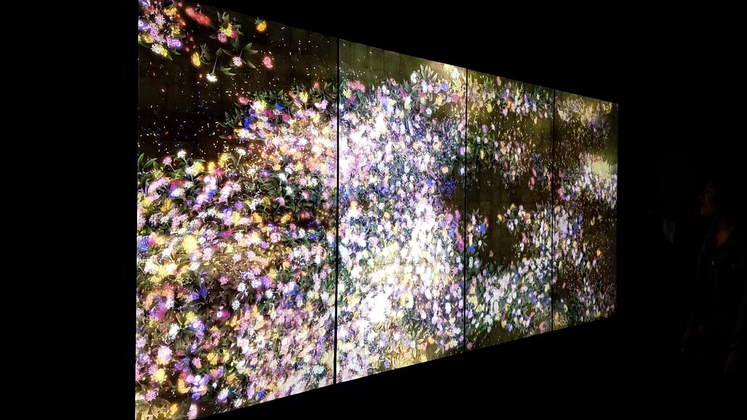 Flowers and People as part of Pace Art + Technology exhibit Living Digital Spaces and Future Parks. This artwork is rendered in real time by a computer program. The flowers bud, grow, and blossom before their petals begin to wither, and eventually fade away. The cycle of growth and decay repeats itself in perpetuity. Depending on the proximity of the viewer to the work, the flowers shed their petals all at once, wither and die, or come to life and blossom once again.