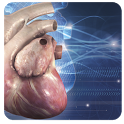 Cardiology 3D Small Animals icon