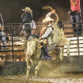 Praying for 8 by Cindy Hicks-Butler - Sports & Fitness Rodeo/Bull Riding