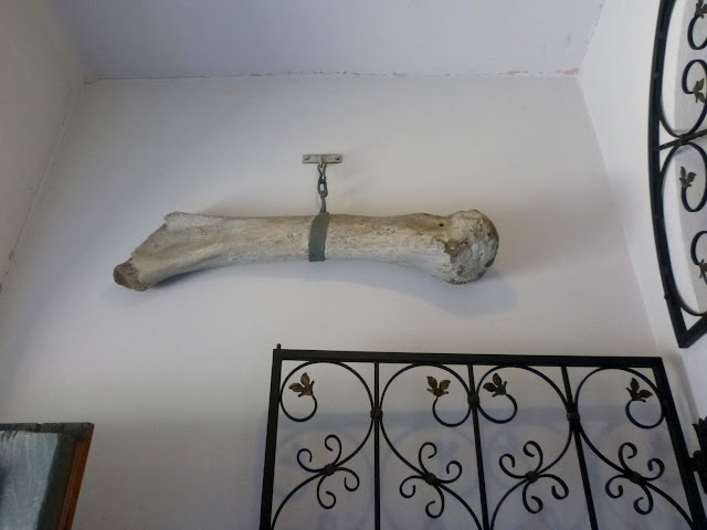 kość mamuta