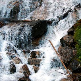 Skalkaho Falls MT by Gregg Landry - Landscapes Waterscapes
